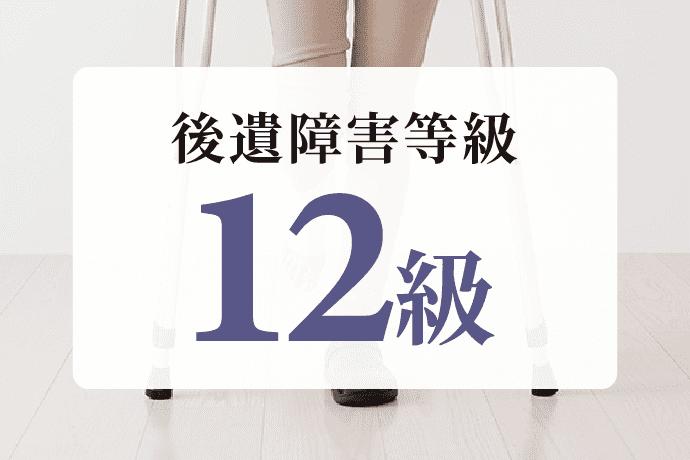 後遺障害12級|慰謝料相場は290万円!弁護士基準で増額実現